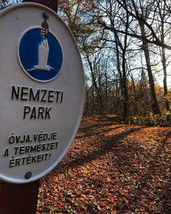 Nemzeti park