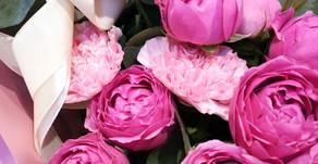Как влияют цветы на Ваше здоровье. Ароматерапия.