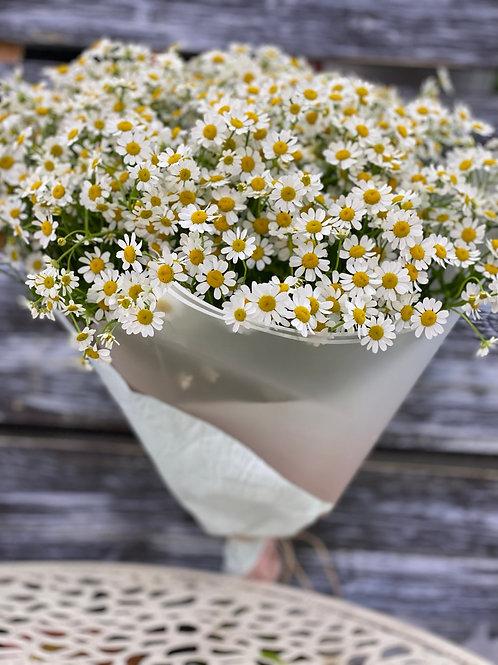 Букет цветов из ромашек|Город Цветов|RadaFlowers |Цветы в Коммунарке|Цветы в Бунинские Луга|Доставка цветов в Переделкино