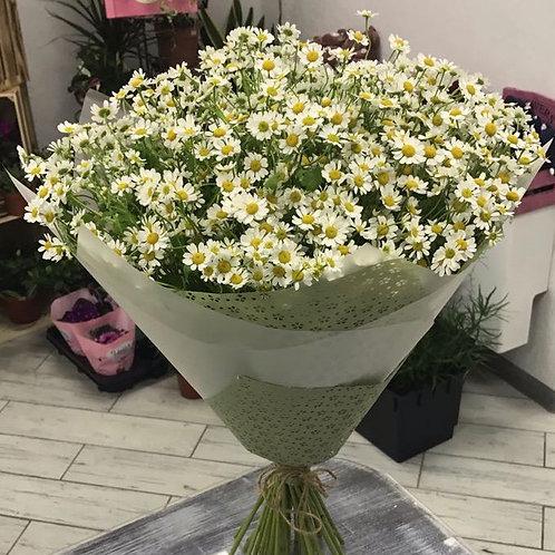 Букет ромашек|Город Цветов|RadaFlowers |Цветы в Коммунарке|Цветы в Бунинские Луга|Доставка цветов в Переделкино