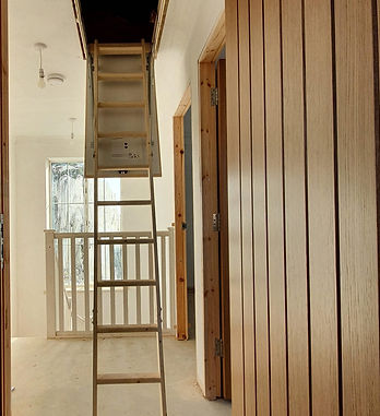 Dawson Drive - loft ladder.jpg