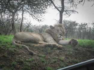 LCM SouthAfrica-13.jpg