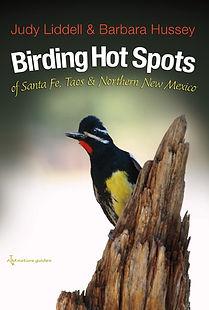 Birding .jpg