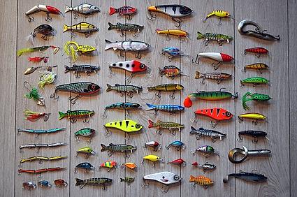 fishing-2669219_960_720.jpg