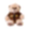 Brownie Teddy