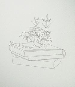 libro+plantas