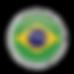 Icone Brasil-01.png