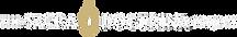 MEDTSDP_Logo_norays_RGBwhiteflame.png