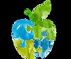 Appleseeds Behavioral Center_edited.png