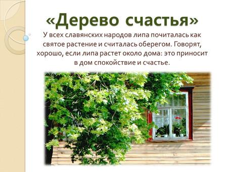 """""""Дерево счастья"""""""