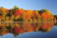 fall-foliage-minnesota.jpg.jpg