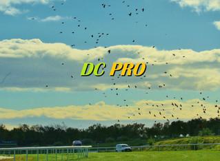 ¡Regresan con éxito las carreras de caballos a España!