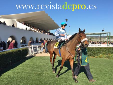 Las carreras de caballos regresan a Madrid el próximo domingo 06 de marzo