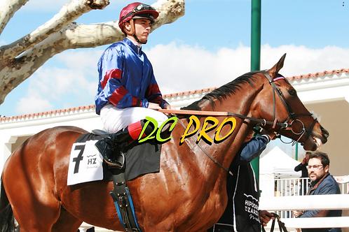 Alaraz y Jaime Gelabert. La Zarzuela 18.03.18