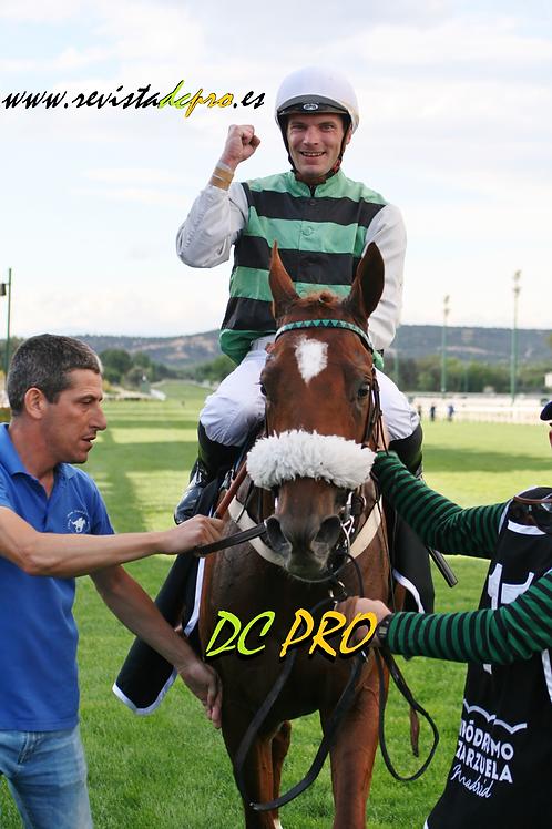 Wild King y J.B.Hamel celebrando el Derby 04.06.17 La Zarzuela