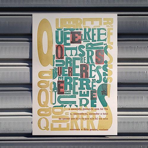 Poster O Quereres