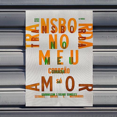 Poster Várias Queixas