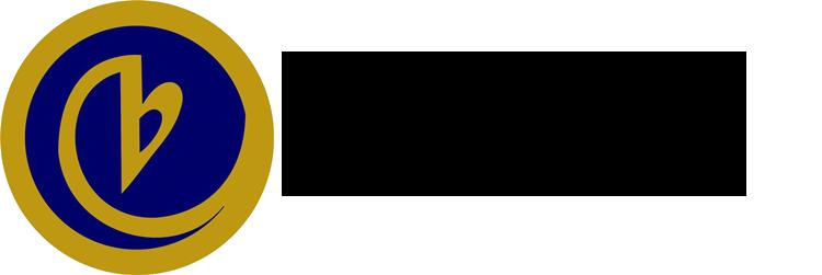 birlik_vakfı_logo