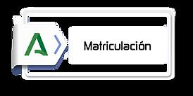 matriculacion1.png