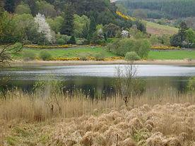 Lac supérieur Glendalough