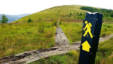 Wicklow_Way_Hiking_Tour_03.jpg