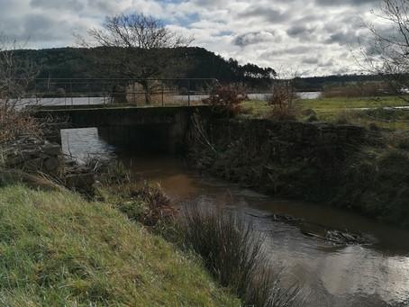 Marais de Vilaine du Rohello à Folleux Beganne Morbihan