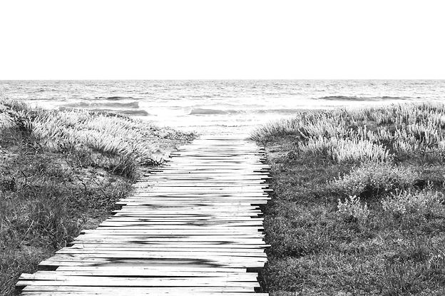 Rustic%20Beach%20Path_edited.jpg