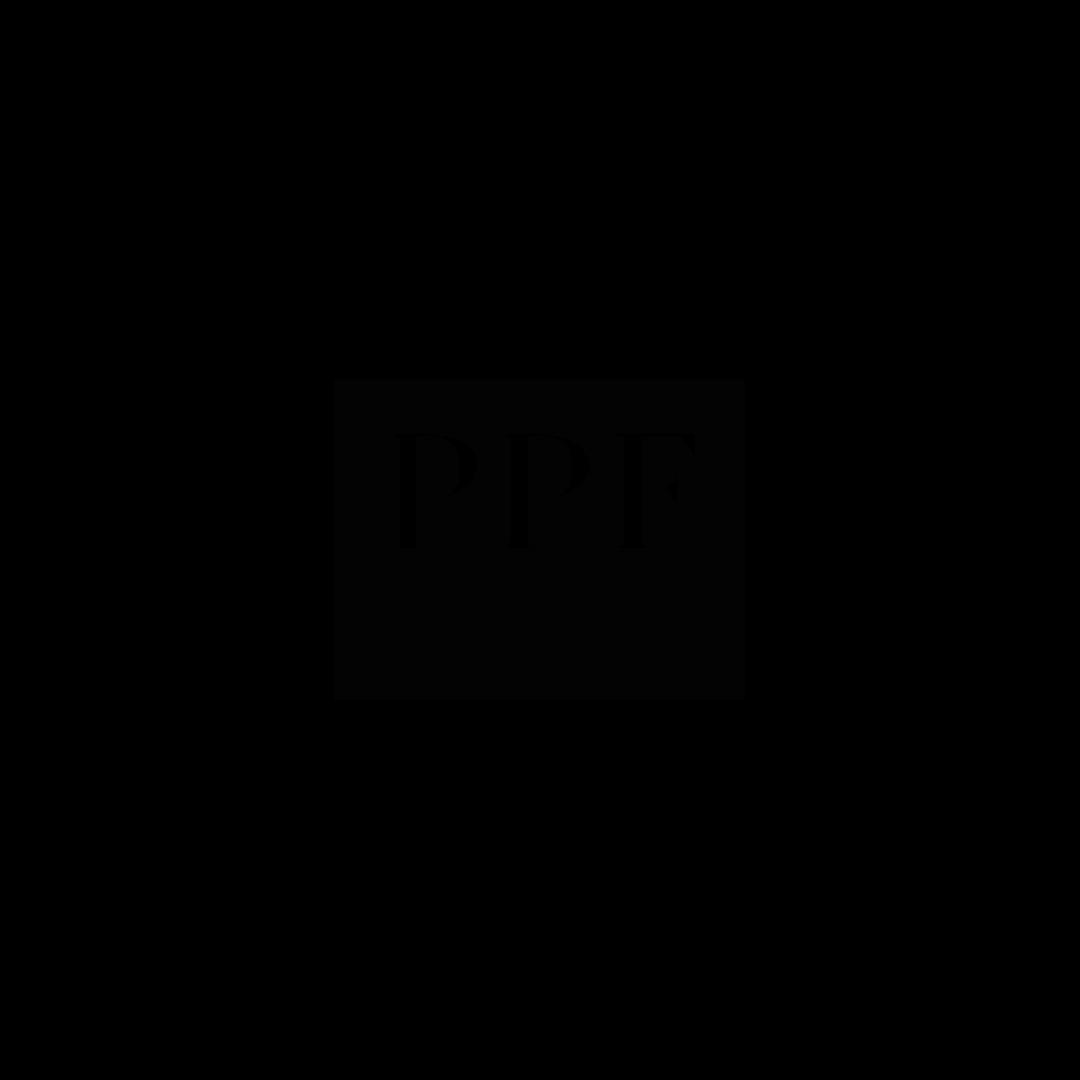 ppf_Kreslicí plátno 1.png