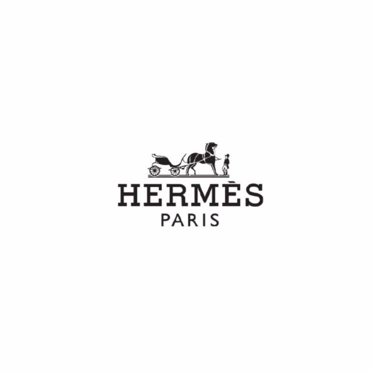 hermes-01_edited_edited.jpg