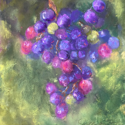 On the Vine Series: Grapes