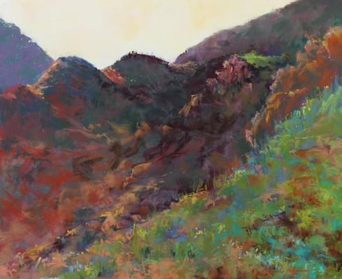 Tucson Beginnings II