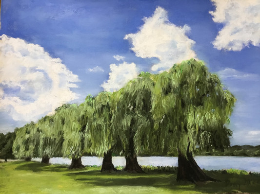 Willows At Cayuga Lake