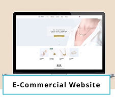 e-commercial website.jpg