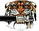 Tiger NO Outline PNG_edited.png