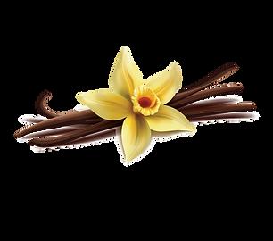 Vanilla-01.png