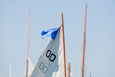 Small Boat Parade -MorganWebb.jpg