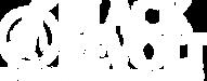 black_revolt_com-logo-lightning-corporat