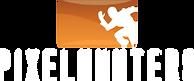 pixelh_logo.png