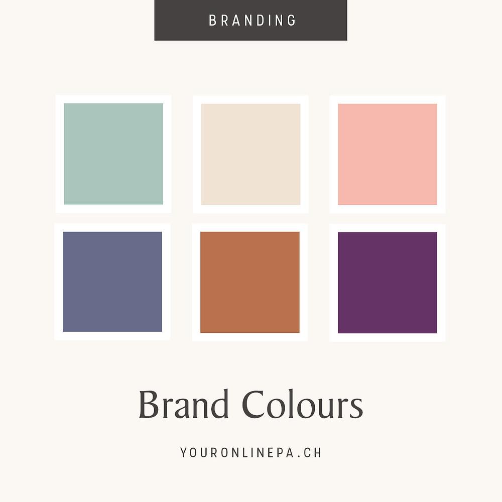 Choix d'une palette de couleur - Graphisme