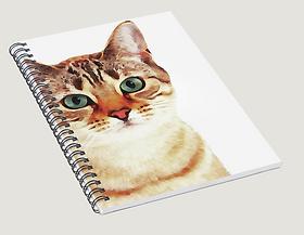 Caderno Pixels.png