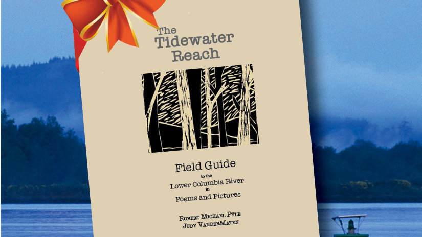 The Tidewater Reach Field Guide
