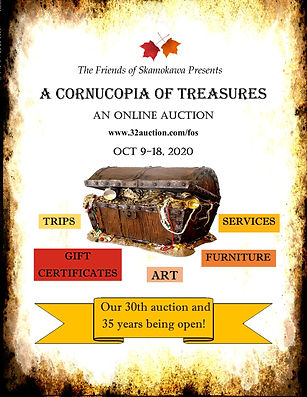 poster with treasure chest.jpg