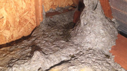 www.kizoa.com_IMG_7691.PNG