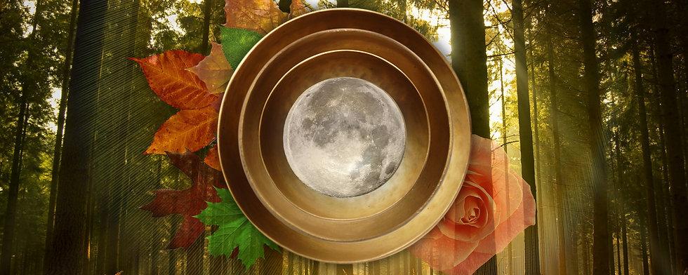 Harvest-Moon-Top-Page.jpg