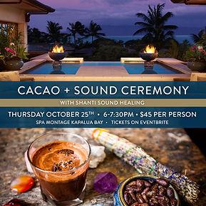 Cacao-SM-Gong-Bath.jpg