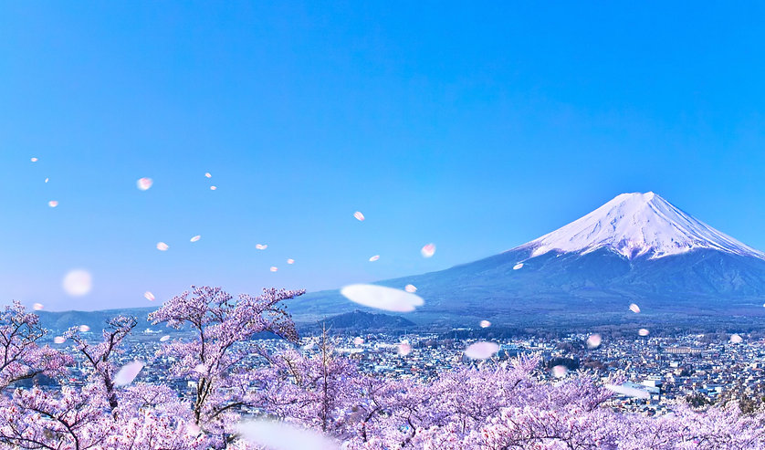 全日本FaST.jpg