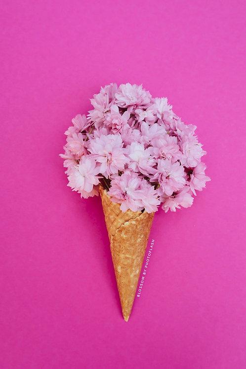 blossom pink icecream