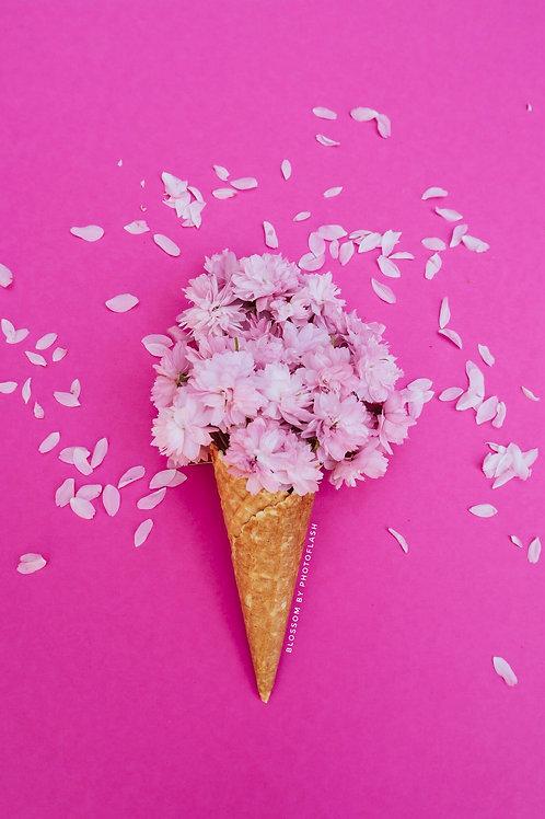blossom ice pink