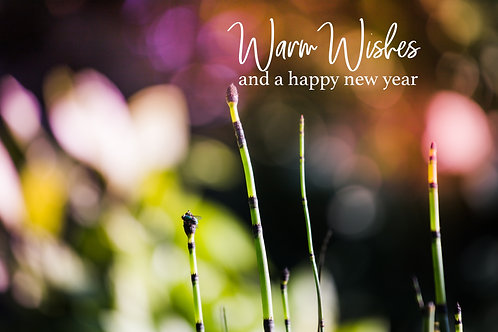 warm wishes color B