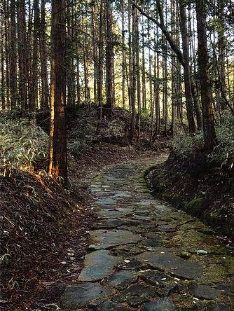 Japan Middle Path E.jpg